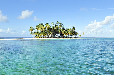 Tropical island with palm trees, Cayos Los Grullos, Mamartupo, San Blas Islands, Panama, Central America
