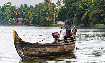 Indian man steering a boat, Backwaters, Alappuzha District, Alleppey, Kerala, India, Asia