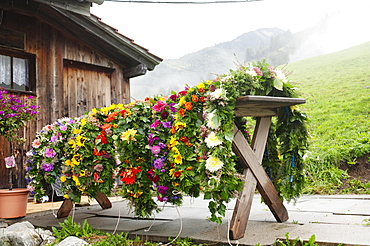 Floral arrangements for the cows during the Almabtrieb cattle drive, alpine pasture near Kerns, Canton of Obwalden, Switzerland, Europe