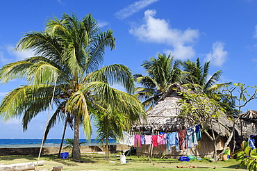 Hut under palm trees, village of the Kuna people, Nalunega, San Blas Islands, Panama, Caribbean, Central America
