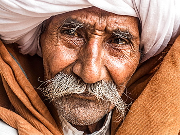 Portrait of an old man with turban and moustache, Ranthambore, Rajasthan, India, Asia