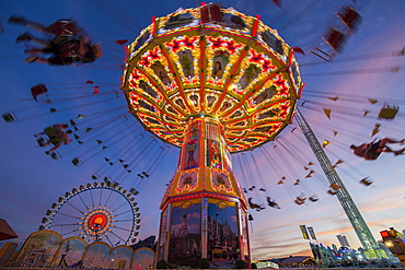 Rotating chain carousel and ferris wheel at the blue hour, Oktoberfest, Munich, Bavaria, Germany, Europe