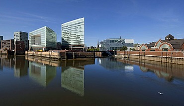 Spiegel publishing house and the Erik-Kontor office building on Ericusspitze, HafenCity district, Hamburg, Germany, Europe