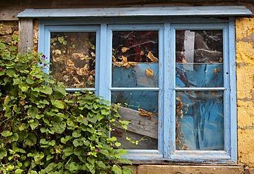 Blue window, Cordes sur Ciel, labelled Les Plus Beaux Villages de France, the Most Beautiful Villages of France, France, Tarn, Europe