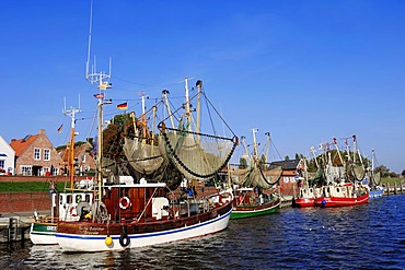 Shrimp cutters in the harbour, Greetsiel, East Frisia, Lower Saxony, Germany, Europe