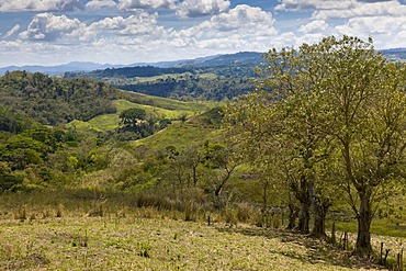 Northeastern uplands with tropical vegetation, Nicaragua, Central America