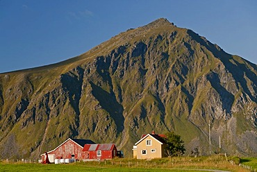 Mountains, green meadows and houses near the village Flakstad, Vareid, Fredvang, island of Flakstadoya, Flakstadoya, Lofoten archipelago, Nordland, Norway, Europe
