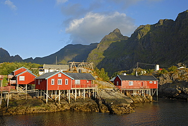 Typical red rorbuer huts, rorbu, at the coast of the Norwegian Sea, mountains at back, A, Moskenes, SorvAgen, island of Moskenesoy, Moskenesoy, Lofoten archipelago, Nordland, Norway, Europe