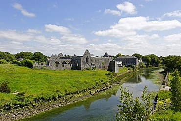 Ruins of the former Franciscan monastery, Askeaton on the River Deel, County Limerick, Ireland, Europe