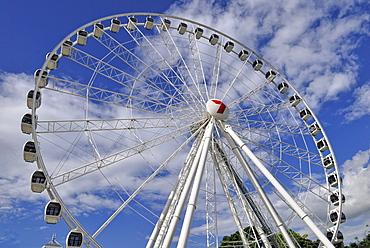 The Wheel, Ferris wheel, South Bank Parklands, Brisbane, Queensland, Australia