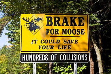 Warning sign on a road, brake for moose, New Hampshire, New England, USA