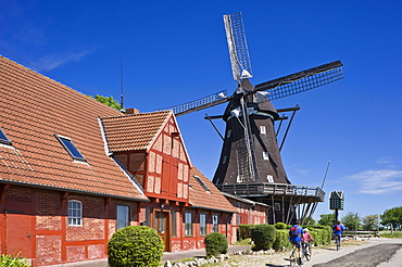 Mill in the Mills and Agricultural museum, Lemkenhafen, Fehmarn island, Baltic Sea, Schleswig-Holstein, Germany, Europe
