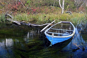 Old sunken boat in a creek, Rondane National Park, Norway, Europe