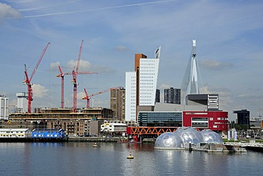 Modern architecture along the Nieuwe Maas River, construction site of Wilhelminapier, Rijn Haven, Rhine Harbour, Kop van Zuid, Rotterdam, Holland, Nederland, Netherlands, Europe