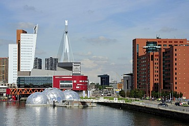Modern architecture along the Nieuwe Maas River, Wilhelminapier, Rijn Haven, Rhine Harbour, Kop van Zuid, Rotterdam, Holland, Nederland, Netherlands, Europe