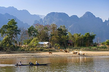 Herd of buffaloes and canoe on the Nam Song River, karst mountains, Vang Vieng, Vientiane, Laos, Indochina, Asia