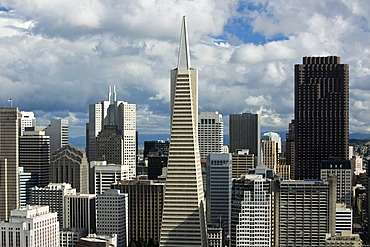 View from Coit Tower towards the Financial Center with the Transamerica Pyramid, San Francisco, California, USA