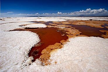 Sulfur spring, Salar de Uyuni salt lake, Uyuni, Bolivia, South America