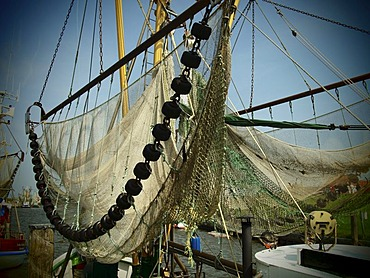 Nets, shrimp cutter, East Frisia, Lower Saxony, Germany, Europe