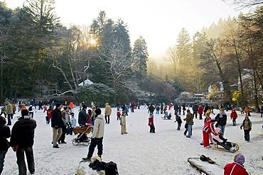 People with skates and sled on frozen Waldsee Lake, Freiburg im Breisgau, Baden-Wuerttemberg, Germany, Europe
