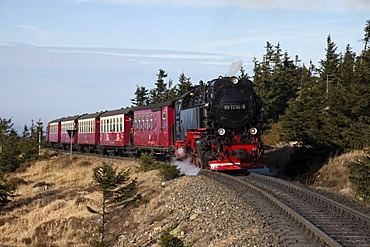 Brockenbahn railway on the way to the summit, Harz narrow-gauge railways, HSB, Brocken Mountain, Harz National Park, Saxony-Anhalt, Germany, Europe