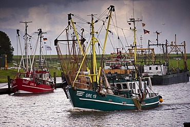 Shrimp trawler or shrimper in the harbour of Greetsiel, East Frisia, Lower Saxony, Germany, Europe