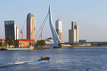 Erasmusbrug bridge and Kop van Zuid district on the Meuse or Maas River, Rotterdam, Holland, the Netherlands, Europe