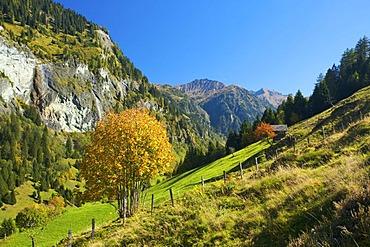 View of Huettschlag in Grossarltal Valley, Pongau, Salzburger Land, Austria, Europe