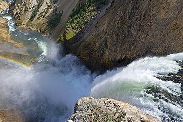 Lower Falls, Yellowstone Canyon, Wyoming, USA