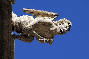 Gargoyle, La Lonja, Silk Exchange, Valencia, Spain, Europe