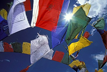 Prayer flags, Sengge-La, Zanskar, Ladakh, Indian Himalayas, Jammu and Kashmir, northern India, India, Asia
