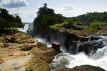 Murchison Falls National Park, North Uganda, Africa