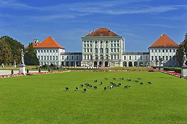 Nymphenburg Palace, Nymphenburg Park with geese, Munich, Bavaria, Germany, Europe