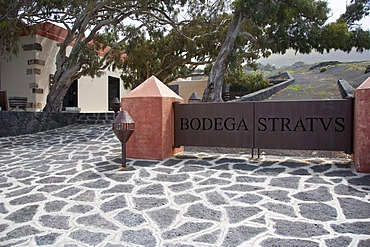 Stratvs Wine Cellar in La Geria, where wine is grown in full volcanic ash, a production that is unique in the world, Lanzarote, Canary Islands, Spain, Europe