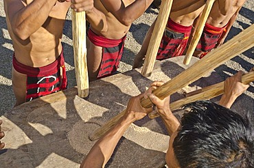 Members of the Samdom tribe show their traditional way of crushing crops at the annual Hornbill Festival, Kohima, Nagaland, India, Asia