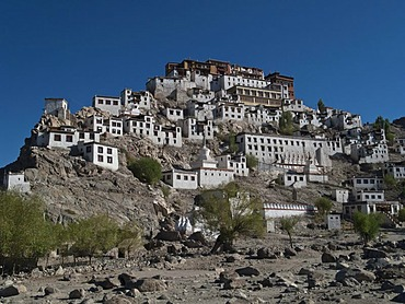 Thikse Gompa, huge monastery situated on a hill south of Leh, overlooking the Indus valley, Leh, Jammu and Kashmir, India, Asia