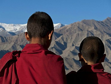 Two young monks looking across the Indus from the rooftop of Thikse Gompa, Thiksey, Jammu and Kashmir, India, Asia