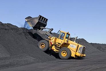 Large wheel loader loading coal, Baralaba Rail Loading Facilities near Moura, Queensland, Australia