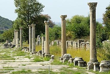 Ruins of Ephesus, Efes, excavations, UNESCO World Heritage Site, Harbour Street leading from the amphitheatre to the sea, Selcuk, Lycia, Southwest Turkey, west coast, Western Turkey, Turkey, Asia Minor, Asia