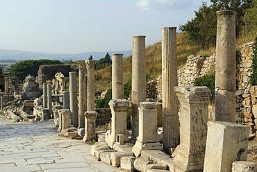 Ephesus, Efes, UNESCO World Heritage Site, excavations, Curetes Street with columns, Selcuk, Lycia, Southwest Turkey, west coast, Western Turkey, Turkey, Asia Minor, Asia