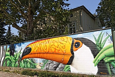 Toco Toucan as a graffiti on the wall of the Cologne Zoo, Cologne, North Rhine-Westphalia, Germany, Europe
