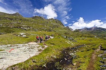 Climbers above the Timmelsalm alpine meadow, while ascending towards Mueller Hut via the Passeiertal valley from the road of Timmelsjoch Pass, Alto Adige, Italy, Europe