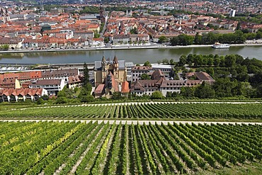 View from Festung Marienberg, Fortress Marienberg, on church of St. Burkard and the Main River, Wuerzburg, Lower Franconia, Franconia, Bavaria, Germany, Europe