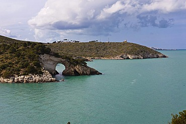 Coast near Gargano, Architello San Felice, also known as the spur of the Italian boot, Foggia Province, Apulia, Puglia, Gargano, Adriatic Sea, Italy, Europe
