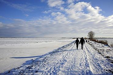 Couple walking in the snow, Reeuwijkse Plassen nature reserve in winter, landscape between Gouda and Bodegraven, Reeuwijk, Holland, The Netherlands, Europe