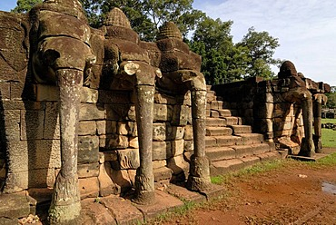 Stone elephant sculptures on the Terrace of Elephants, Angkor Wat Temple Complex, Siem Reap, Cambodia, Indochina, Southeast Asia, Asia