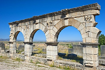 Roman ruins, ancient city of Volubilis, UNESCO World Heritage Site, Morocco, North Africa, Africa
