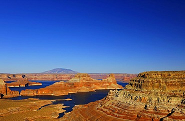 View from Alstrom Point towards Lake Powell, Padre Bay with Gunsight Butte and Navajo Mountain, Bigwater, Glen Canyon National Recreation Area, Arizona, Utah, United States of America, USA
