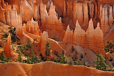 Queen Victoria rock formation, Queens Garden Trail, Sunset Point, Bryce Canyon National Park, Utah, United States of America, USA