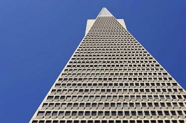 Transamerica Pyramid, skyscraper, Financial District, San Francisco, California, United States of America, USA, PublicGround